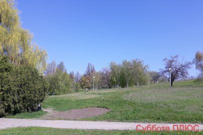 maf-i-stoliki-ustanovlennye-naprotiv-detskoj-ploshhadki-perenesli-iz-zaporozhskogo-parka-foto.jpg