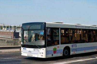 meloch-ne-dengi-voditel-avtobusa-otkazalsya-brat-monety-za-proezd-video.jpg
