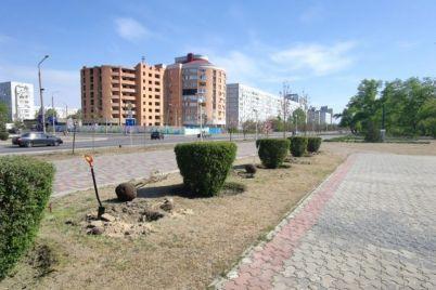 misto-energetikiv-u-zaporizkij-oblasti-prikrasili-sotnyami-sakur.jpg
