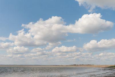 molochnyj-liman-prodolzhaet-ozhivat-teper-v-vode-mogut-nerestitsya-ryby-scaled.jpg