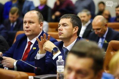motorovskaya-kvota-mer-zaporozhya-opredelilsya-s-novym-zamom.jpg