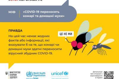 muhi-i-komari-ne-perenosyat-koronavirus-moz.jpg