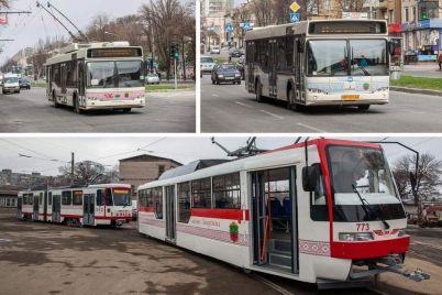 municzipalnij-transport-zaporizhzhya-nedootrimud194-groshej-cherez-pasazhiriv.jpg
