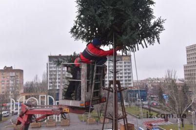 na-czentralnoj-ploshhadi-zaporozhya-glavnuyu-elku-oblasti-montiruyut-iz-vetok-foto.jpg