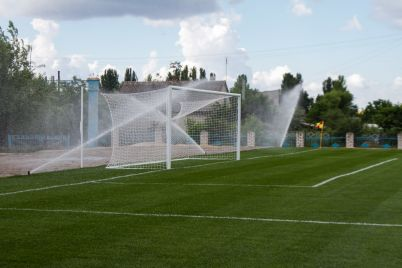 na-stadione-mozhno-koz-pasti-samardak-raskritikoval-futbolnoe-pole-kotoroe-postroil-nibulon.jpg