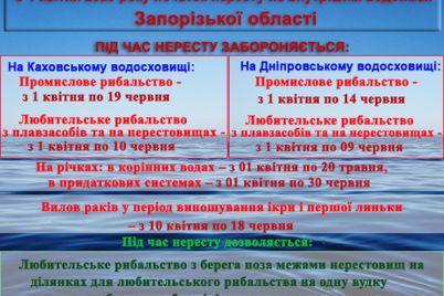 na-vnutrishnih-vodojmah-zaporizkod197-oblasti-zaboronyat-loviti-ribu.jpg