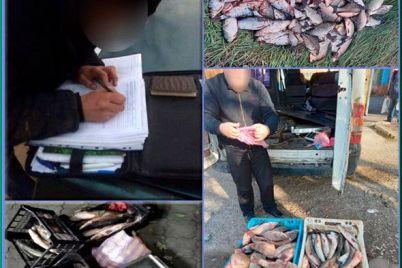 na-zaporozhskih-rynkah-prodavali-nelegalnuyu-rybu.jpg