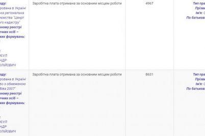 nachalnik-rajonnogo-zemelnogo-kadastra-otkryl-v-zaporozhskoj-oblasti-nelegalnuyu-azs.jpg