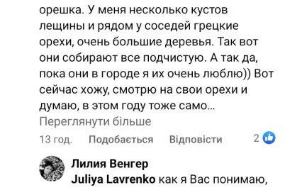 obedennyj-pereryv-u-gryzuna-zhitelnicza-zaporozhya-podelilas-milym-video-s-belkoj-video-foto.jpg