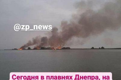 ocherednoj-pozhar-v-zaporozhe-silno-goreli-dneprovskie-plavni-foto.jpg