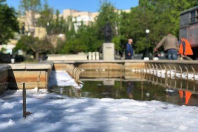 pennyj-fontan-v-berdyanske-huligany-brosili-butylku-moyushhego-sredstva-v-fontan-video.jpg