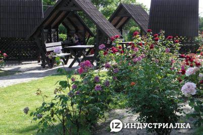 pobyl-petya-doma-potom-v-klube-grob-postavili-usmirenie-chehoslovakii-obernulos-gorem-v-zaporozhskom-sele.jpg