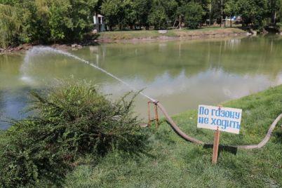 pochemu-v-glavnom-zaporozhskom-parke-voznikayut-problemy-s-ozerami-i-kak-s-etim-borotsya.jpg