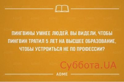 podborka-svezhih-anekdotov-na-11-dekabrya-foto.jpg