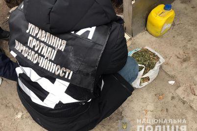 policzejski-viyavili-v-melitopolczya-kanabis.jpg