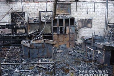 pozhar-na-zaporozhskom-kurorte-dotla-sgorel-magazin-odnoj-iz-torgovyh-setej-foto.jpg