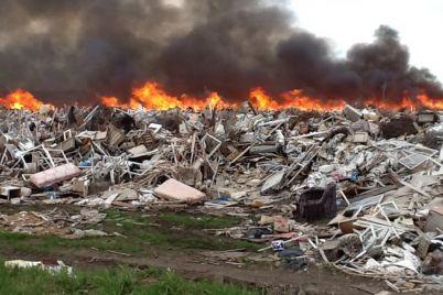 privyazali-k-shinam-i-sozhgli-v-zaporozhskoj-oblasti-proizoshlo-ubijstvo.jpg