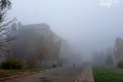 prognoz-pogody-v-zaporozhe-i-oblasti-budet-tuman-vozmozhen-gololed.jpg