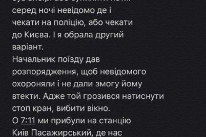 prosnulas-ot-udarov-po-golove-v-poezde-zaporozhe-kiev-pytalis-iznasilovat-zhenshhinu-video.jpg