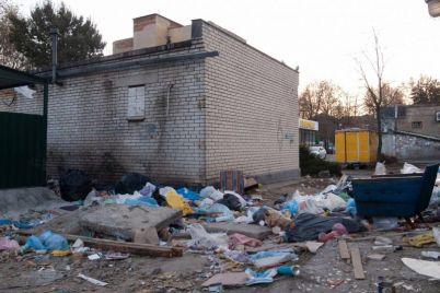 pryamo-v-czentre-zaporozhya-obrazovalas-bolshaya-svalka-musora-foto.jpg