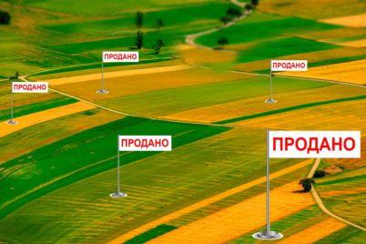 pyat-mesyaczev-do-starta-skolko-budet-stoit-gektar-paya-v-zaporozhskoj-oblasti.jpg