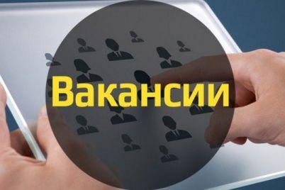 rabochie-v-czene-kakie-professii-samye-populyarnye-na-rynke-truda-v-zaporozhe.jpg