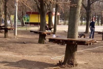 rabotali-bez-dokumentov-v-zaporozhe-demontirovali-verevochnyj-park-foto.jpg