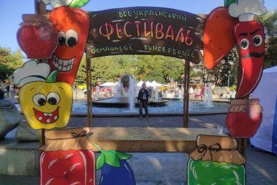 s-pesnyami-i-tanczami-v-zaporozhe-proshel-festival-konservaczii.jpg