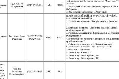 sezon-startuvav-u-skilki-zaporizhczyam-obijdetsya-yalinka-ta-de-d197d197-pridbati.jpg