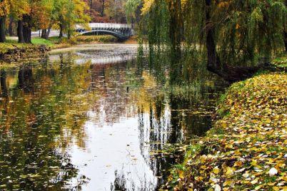 shho-zminilosya-v-golovnomu-parku-zaporizhzhya-za-2019-rik.jpg