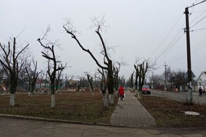 shkolnyj-park-v-zaporozhskoj-oblasti-prevratili-v-kladbishhe-foto.jpg
