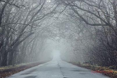silent-hill-zaporozhskij-fotograf-zapechatlel-tumannyj-ostrov-foto.jpg