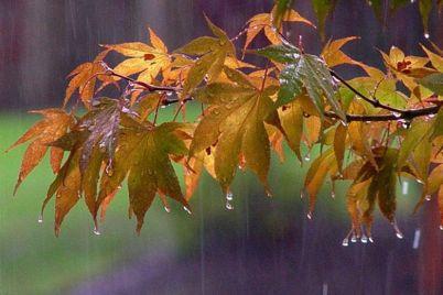 sinoptiki-prognoziruyut-uhudshenie-pogody-v-zaporozhe.jpg