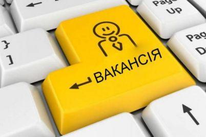skilkoh-zaporizhcziv-czentr-zajnyatosti-mozhe-praczevlashtuvati.jpg
