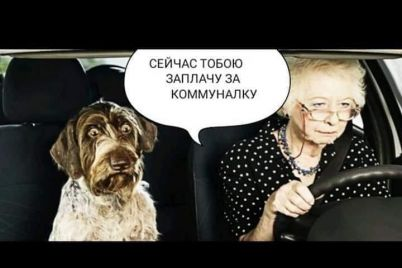 sluga-pensionerczi-prodaj-sobaku-zaplati-za-gaz.jpg