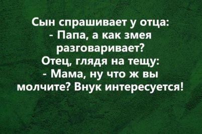 smeh-prodlevaet-zhizn-veselaya-podborka-anekdotov-na-28-noyabrya-foto.jpg