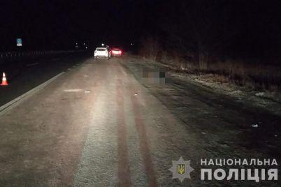 smertelnoe-dtp-v-zaporozhskoj-oblasti-krossover-sbil-zhenshhinu-foto.jpg
