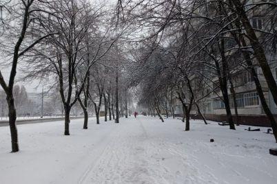 snezhnyj-mart-v-zaporozhe-iz-pod-snega-vidneyutsya-czvety.jpg
