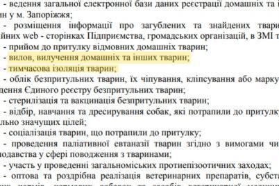 sobaku-kotoraya-v-zaporozhe-ukusila-zhenshhinu-otlovili-foto-video.jpg