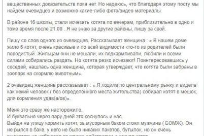 soczesti-v-zaporozhskoj-oblasti-ulichnyh-kotyat-otlavlivayut-i-skarmlivayut-udavam.jpg