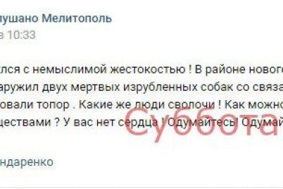 soczseti-v-zaporozhskoj-oblasti-neizvestnyj-zarubil-toporom-dvuh-sobak.jpg