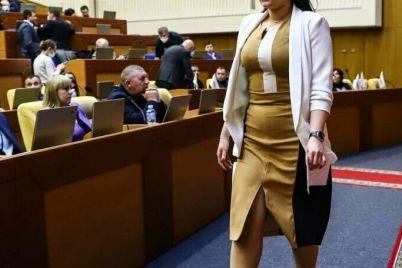 tret-milliona-griven-dohoda-i-sberezheniya-nalichkoj-chto-deklariruet-novaya-glava-zaporozhskogo-oblsoveta.jpg
