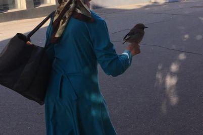 trogatelnaya-istoriya-druzhby-pticzy-i-cheloveka-zaporozhanka-vyhodila-sojku-foto.jpg