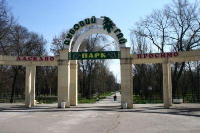 turnir-z-boksu-ta-misczevi-kolektivi-shho-planud194-miska-vlada-v-den-nezalezhnosti.jpg