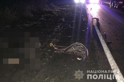 u-dtp-v-zaporizkij-oblasti-zaginuv-velosipedist-foto.jpg