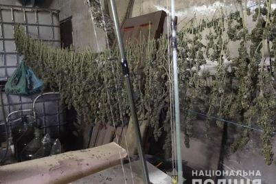 u-zaporizhzhi-cholovik-zberigav-vdoma-5-kg-marihuani-pistolet-mislivsku-rushniczyu-ta-nabod197-foto.jpg