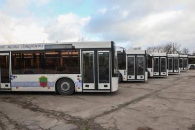 u-zaporizhzhi-na-marshrut-vijde-avtobus-yakij-zd194dnad194-verhnyu-horticzyu-z-czentrom.jpg
