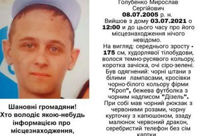 u-zaporizhzhi-tretij-den-rozshukuyut-bezvisti-zniklogo-pidlitka-foto.jpg
