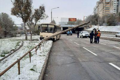 u-zaporizhzhi-vodij-avtobusu-znis-elektrooporu.jpg