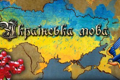 u-zaporizhzhi-zapraczyud194-zakon-pro-movu-podrobiczi.jpg